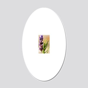 French lavender (Lavandula d 20x12 Oval Wall Decal