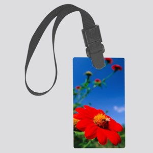 Honeybee pollinating a Mexican s Large Luggage Tag