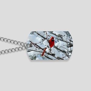 Snow Cardinal Dog Tags
