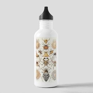 Arachnid organisms, ar Stainless Water Bottle 1.0L