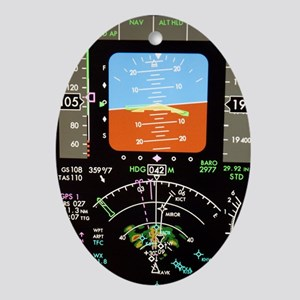 Aeroplane control panel display Oval Ornament