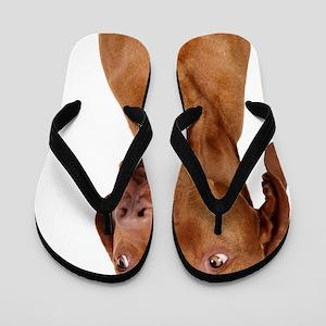 sorry dog Flip Flops