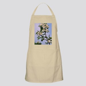 Chinese pear blossom (Pyrus ussuriensis) Apron