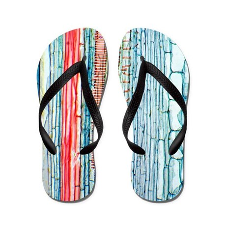 Castor oil stem, light micrograph Flip Flops