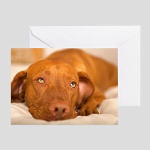 dreamy dog Greeting Card