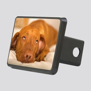 dreamy dog Rectangular Hitch Cover