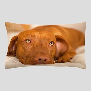 dreamy dog Pillow Case