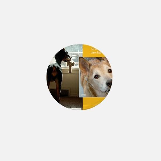 Tripawds Three Legged Dog Calendar Mini Button