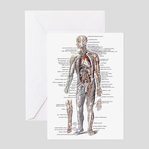 Anatomy of the Human Body Greeting Card