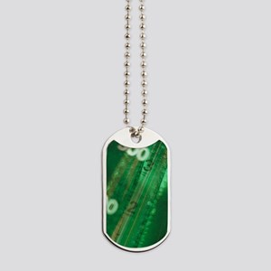 Abstract view of measuring equipment scal Dog Tags