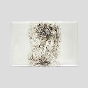 Pekingese Portrait Magnets