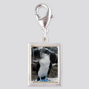 Blue-footed booby Silver Portrait Charm