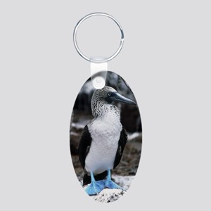 Blue-footed booby Aluminum Oval Keychain