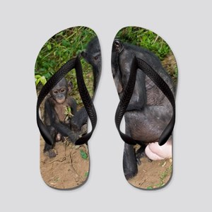Bonobo ape mother and young Flip Flops