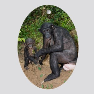 Bonobo ape mother and young Oval Ornament