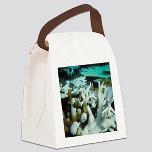 Bleached coral Canvas Lunch Bag