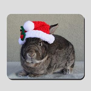 Bunny Christmas Ornament Mousepad