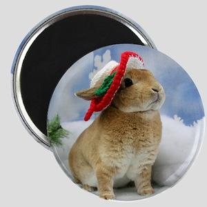 Bunny Christmas Ornament Magnet