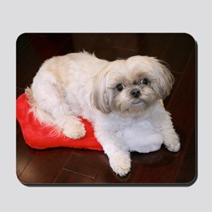 Dog Holiday Ornament Mousepad