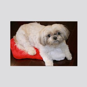 Dog Holiday Ornament Rectangle Magnet
