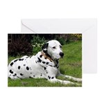 ...Dalmatian 02... Note Cards (Pk of 10)