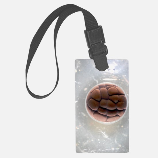 Cleavage in frog egg, light micr Luggage Tag