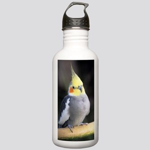 Cockatiel Stainless Water Bottle 1.0L