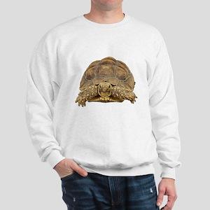 Tortoise Photo Sweatshirt