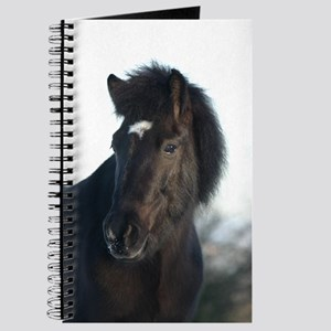 Icelandic horse Journal