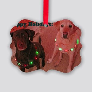 Christmas Lights Picture Ornament