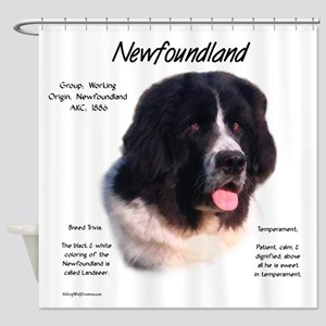 Newf (Landseer) Shower Curtain