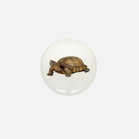 Box Turtle Mini Button