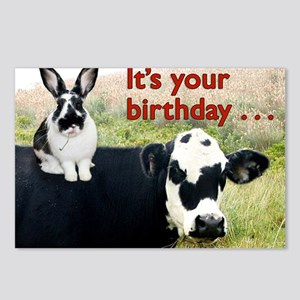 Bunny  Cow Birthday Card Postcards (Package of 8)