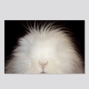 Bunny Card Postcards (Package of 8)