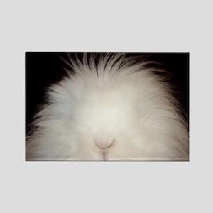 Bunny Card Rectangle Magnet