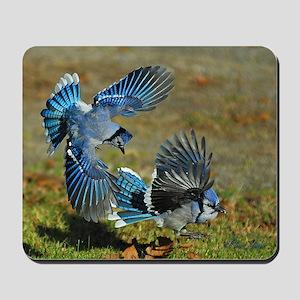 2 Blue Jays Mousepad