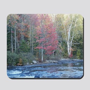 Adirondack Stream In The Fall Mousepad