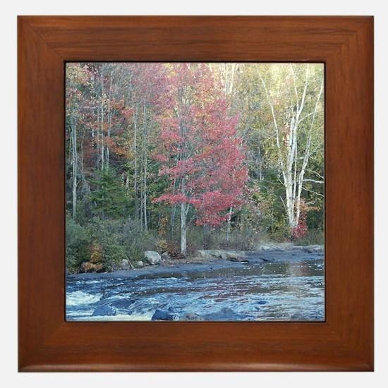 Adirondack Stream In The Fall Framed Tile