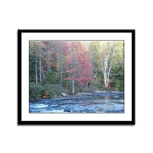 Adirondack Stream In The Fall Framed Panel Print