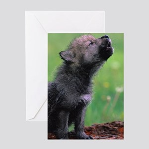 Wolf Cub Greeting Card