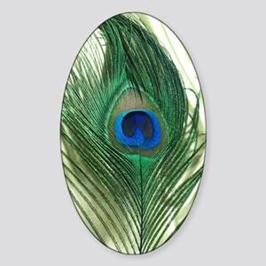 Green Apple Peacock Feather Sticker (Oval)