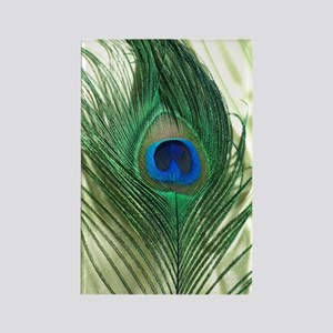 Green Apple Peacock Feather Rectangle Magnet