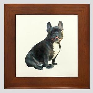 French Bulldog (blk)1 Framed Tile