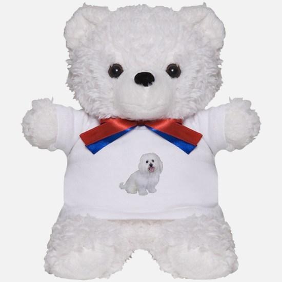 Havanese (W1) Teddy Bear