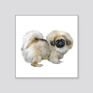 "Pekingese (sable2) Square Sticker 3"" x 3"""