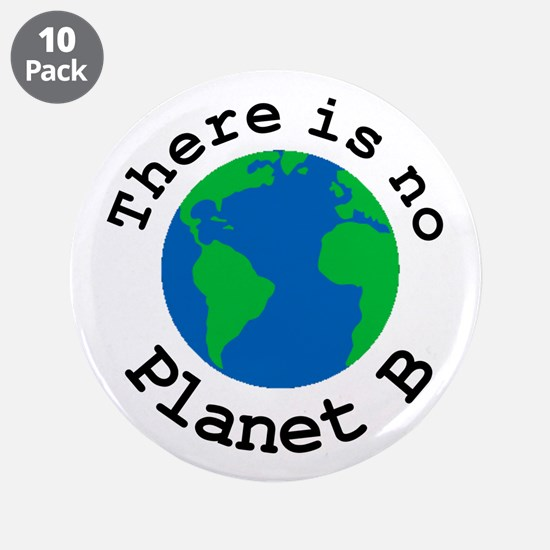 """There is no Planet B 3.5"""" Button (10 pack)"""