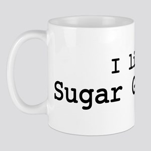 I like Sugar Gliders Mug