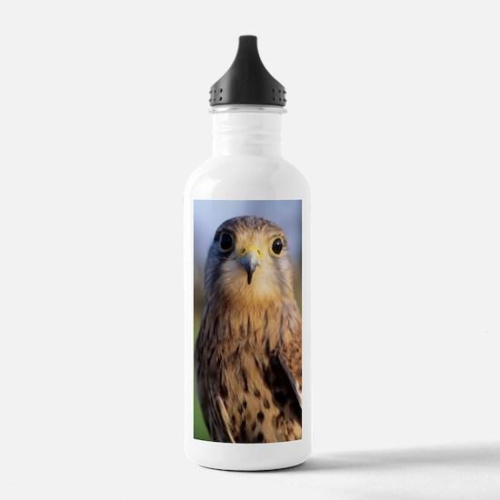 Common kestrel Water Bottle