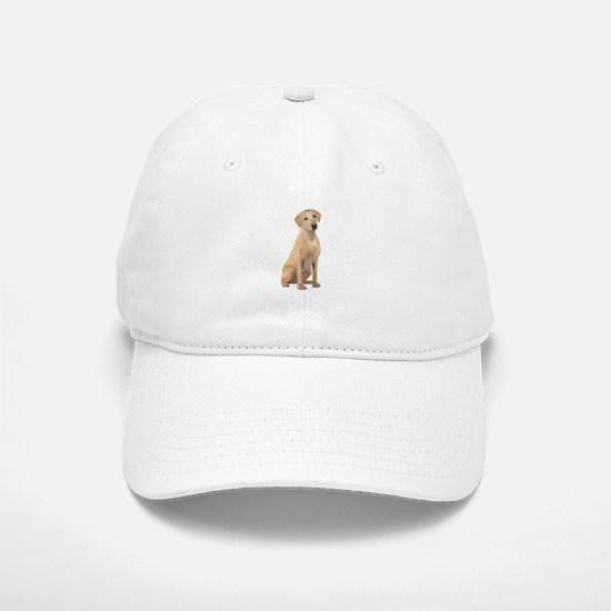 Labrador (Y3) Baseball Baseball Cap