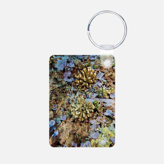 Coral reef community Keychains